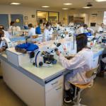 Laboratoire élèves