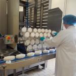 Femme tri fromage machine