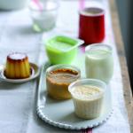 Ambiance-yaourt et desserts lactés
