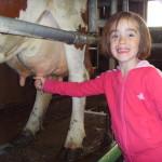 Enfant et pis de vache