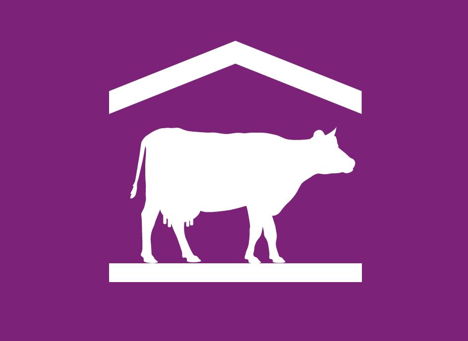 picto-ferme-laitière