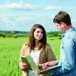 jeunes étudiants champ de blé analyse ordinateur