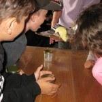 Enfants visite fabrication beurre motte