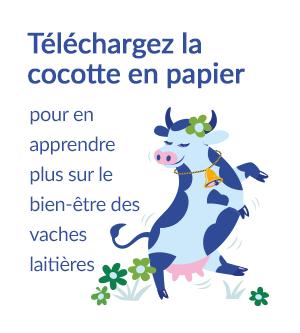 Téléchargez la cocotte pour en apprendre plus sur le bien-être des vaches laitières