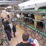 Visite pédagogique salle de traite ferme Mionet