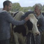 C'est quoi une vache ?