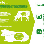 Panneau 'exploitation laitière' 4 : De l'herbe aux bénéfices du lait