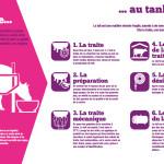 Panneau 'exploitation laitière' 5 : De l'étable au tank à lait