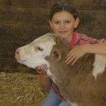 Jeune fille et veau montbelliard