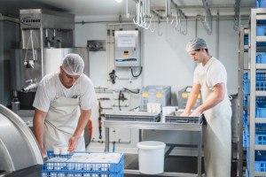 Laiterie, fromagers faisselles conditionnement