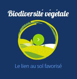 biodiversite-vegetale