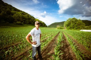 Jeune dans champs de maïs, semis, agriculture