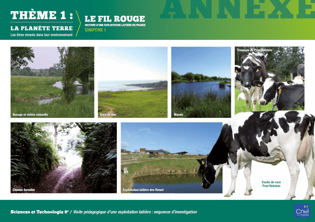 1-THEME1_Annexe_Fil-Rouge