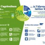 Panneau 'exploitation laitière' 7 : De l'agriculture bio à l'élevage laitier bio