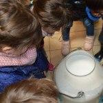 classe d'enfants, visite pédagogique regardant dans pot au lait
