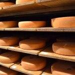 Affinage de fromages en cave chez H. Mons