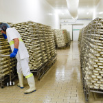 LP_fromagerie_munster_40