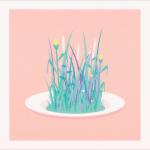 video-l-herbe-c-est-vert-01 Capture vidéo Animation V Pardo