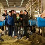 Ferme pédagogique, visite, groupe, stabulation, vaches, éleveuse