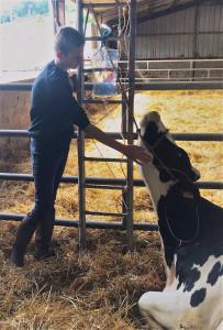 Devenir vétérinaire rural : Gérard Bosquet accueille de nombreux jeunes en formation